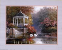 Swans in Parkscape Fine Art Print