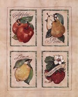 Vintage Fruit Fine Art Print