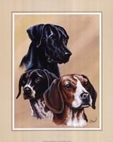 Dog Collage II Fine Art Print