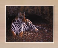 Tiger's Lair Fine Art Print