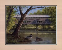 Covered Bridge With Ducks Fine Art Print