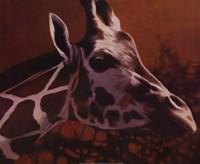 "Giraffe Grande by T.C. Chiu - 20"" x 16"" - $11.99"