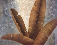Palm Fronds II Fine Art Print