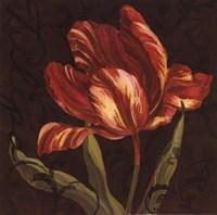 """Tulipa II by Jillian Jeffrey - 12"""" x 12"""""""