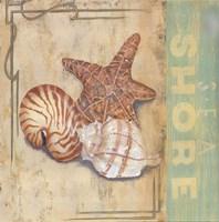 """Sea Shore by Pamela Smith-Desgrosellier - 12"""" x 12"""" - $9.99"""