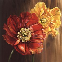 Poppies - square Fine Art Print