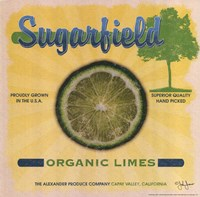 Sugarfield Limes Fine Art Print