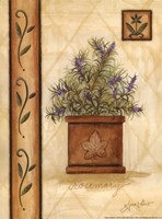 """Tuscan Rosemary by Annie Lapoint - 9"""" x 12"""""""