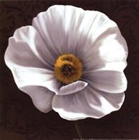 White Poppies I - mini Fine Art Print