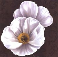 White Poppies II - mini Fine Art Print