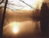 Fog on Shelly Lake II Framed Print