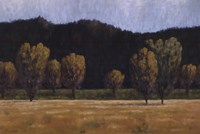 "Cottonwood Country II by John Macnab - 36"" x 24"""