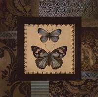 "Butterfly Garden II by Kimberly Poloson - 12"" x 12"", FulcrumGallery.com brand"