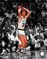 Larry Bird Spotlight Action Fine Art Print