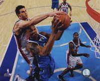 Danilo Gallinari 2009-10 Action Fine Art Print