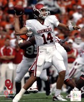 Sam Bradford University of Oklahoma Sooners 2007 Action Fine Art Print