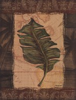 Tropical Leaf I Fine Art Print