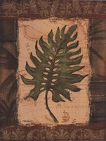 """Tropical Leaf II by Todd Williams - 12"""" x 16"""""""