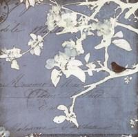 Song Birds III - mini Framed Print