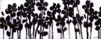 Black Flowers on White II Fine Art Print
