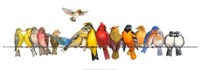 """Large Bird Menagerie by Wendy Russell - 37"""" x 13"""""""