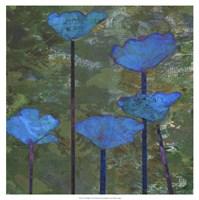 Teal Poppies I Fine Art Print