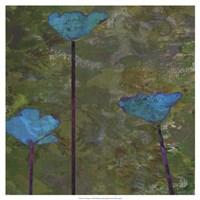 Teal Poppies II Fine Art Print