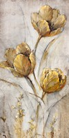 Golden Poppies on Taupe I Fine Art Print