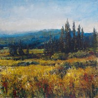 Pacific Northwest I by Timothy O'Toole - various sizes