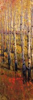 """13"""" x 37"""" Forest Pictures"""