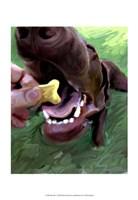 "Dog Bite by Robert McClintock - 13"" x 19"""