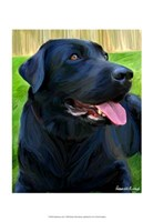 "Handsome Lab by Robert McClintock - 13"" x 19"", FulcrumGallery.com brand"