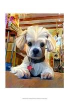 "Mazel Dog by Robert McClintock - 13"" x 19"""