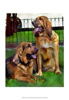"""Bloodhounds by Robert McClintock - 13"""" x 19"""""""