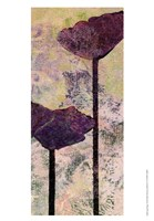 Quad Poppy I Fine Art Print
