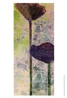 Quad Poppy II Fine Art Print