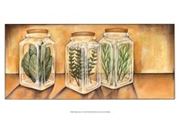 Spice Jars I Fine Art Print