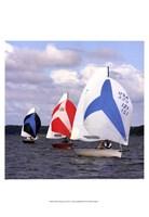 """13"""" x 19"""" Sailing"""