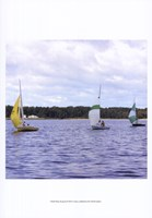 Water Racing III Fine Art Print