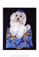 Maltese Clutch Fine Art Print