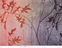 Fall Foreshadowed Fine Art Print