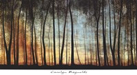 Golden Forest Fine Art Print