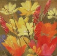 Field Of Delight Fine Art Print