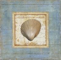 Bijou de Mar III Framed Print