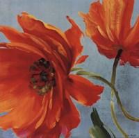 "Flamboyant I by Lisa Audit - 18"" x 18"""