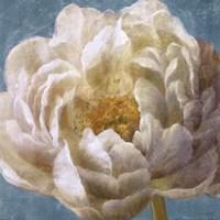 "Turqoise Bloom I by Danhui Nai - 18"" x 18"""