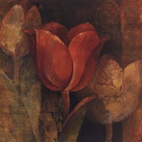 Tulip Reflection Fine Art Print