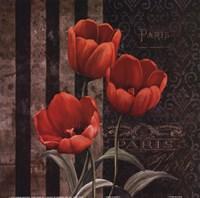 Paris Fleurs I Fine Art Print
