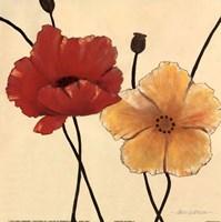 Awaited Blooms I Fine Art Print