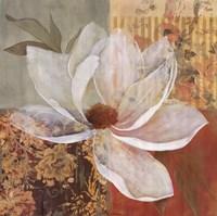Magnolia Morning I Fine Art Print